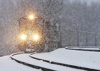 Image © Walter Scriptunas II - www.scriptunasimages.com